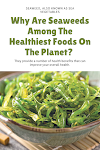 Why Are Seaweeds Among The Healthiest Foods On The Planet?