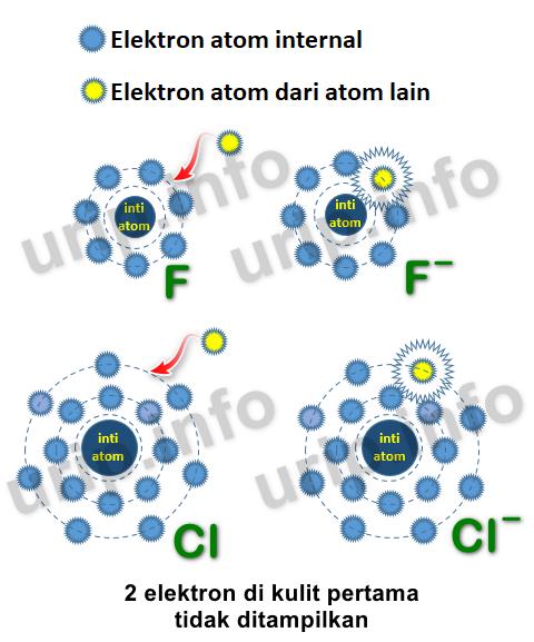 Apa Yang Dimaksud Dengan Afinitas Elektron : dimaksud, dengan, afinitas, elektron, Kecenderungan, Afinitas, Elektron,, Penyimpangan,, Argumennya