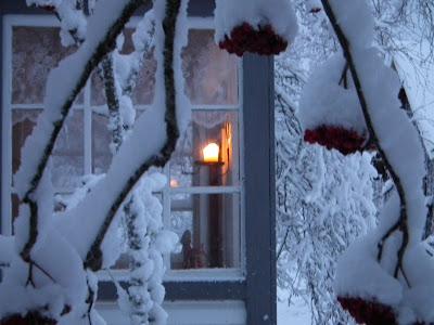 talvi, kuisti, valo, pihlajanmarjat, kynttilä