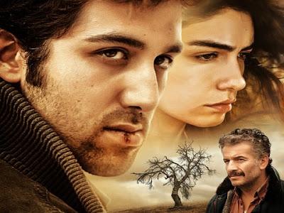 فيلم شجرة الكمثرى البرية Ahlat Agaci