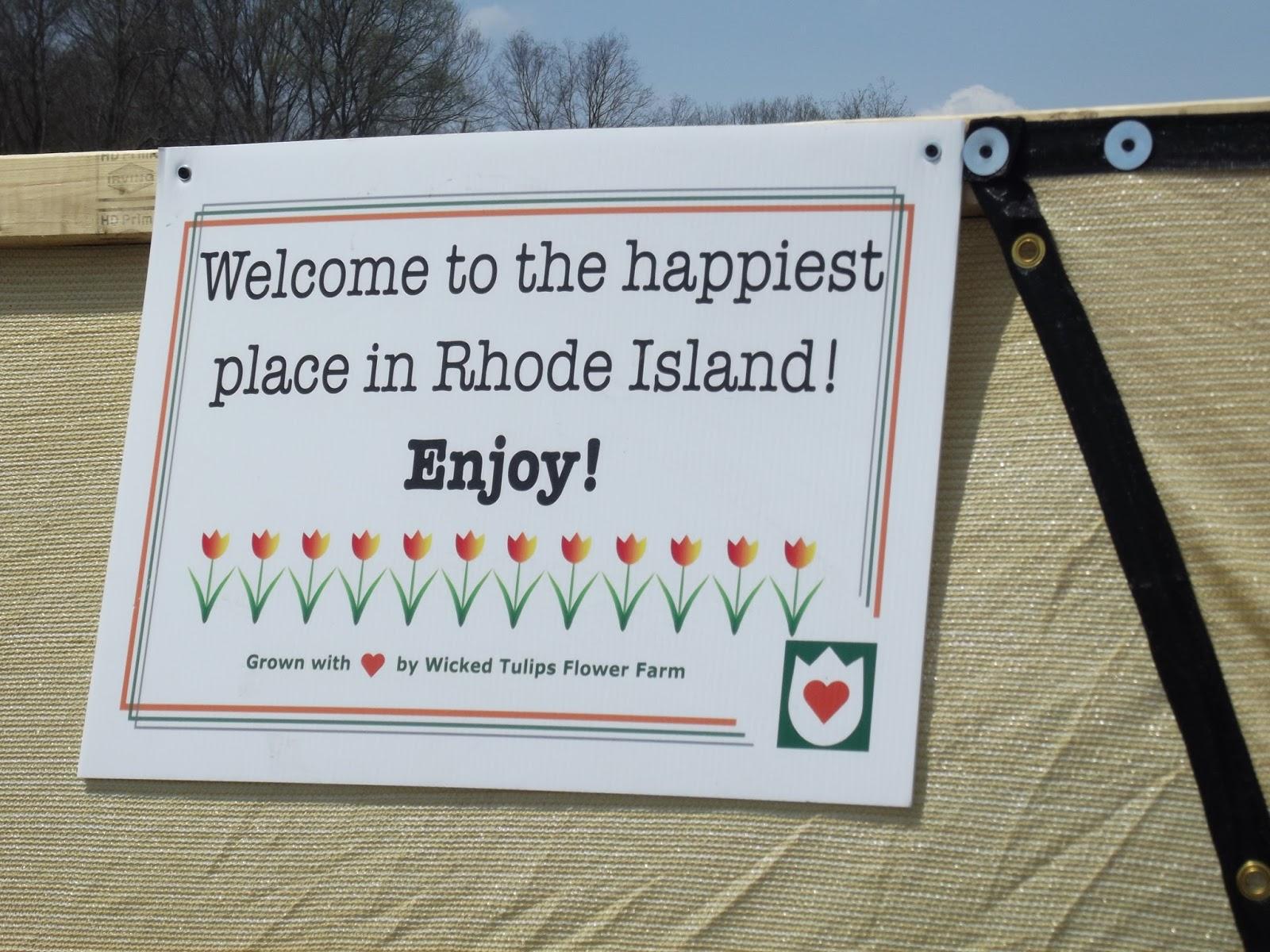 The Old Granite Step: Wicked Tulips Flower Farm; Johnston, Rhode Island
