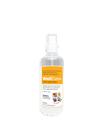 WellCare Surface Disinfectant - 200 ml Spray