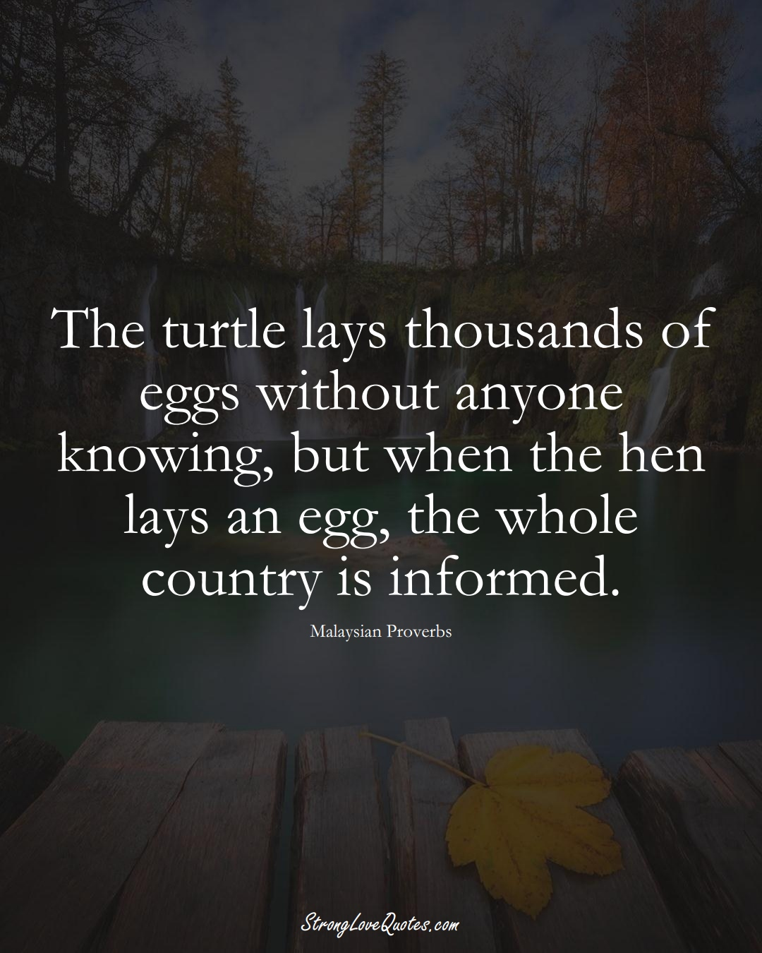 The turtle lays thousands of eggs without anyone knowing, but when the hen lays an egg, the whole country is informed. (Malaysian Sayings);  #AsianSayings