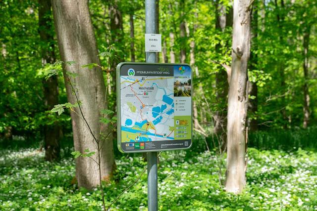 Premiumwanderweg DonAUwald  Etappe 5 von Höchstädt nach Schwenningen 05