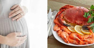 ibu hamil dan seafood