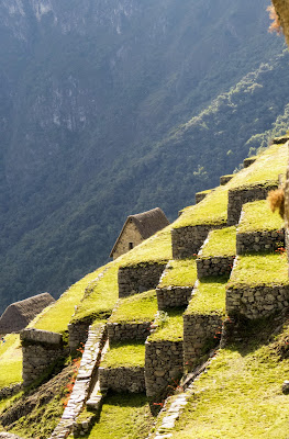 Machu Picchu Photos: a terraced farm