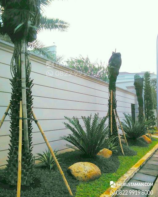 Minimalis taman rumah
