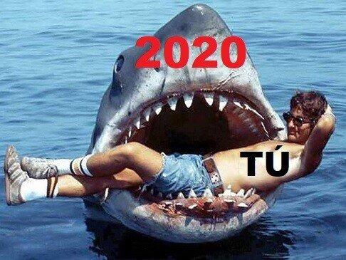 Descripción gráfica del 2020