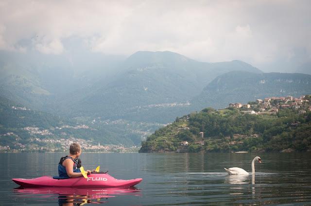 Cu caiacul si cu lebada pe Lacul Como, Italia