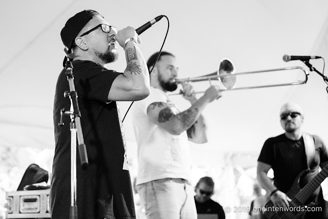 Los Poetas at Riverfest Elora on Saturday, August 17, 2019 Photo by John Ordean at One In Ten Words oneintenwords.com toronto indie alternative live music blog concert photography pictures photos nikon d750 camera yyz photographer summer music festival guelph elora ontario