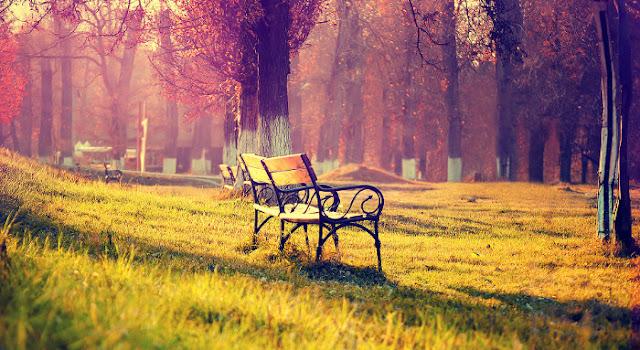 Etude of Memories - Nada Singkat Kenangan
