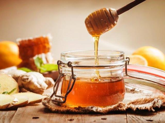 Σύγχρονος επαγγελματίας Μελισσοκόμοςστο Δημόσιο ΙΕΚ Ναυπλίου