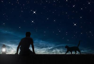 Arti Mimpi Kucing Menurut Islam Dan Tafsirnya Secara Lengkap