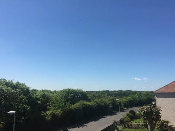 Summer Sun 101