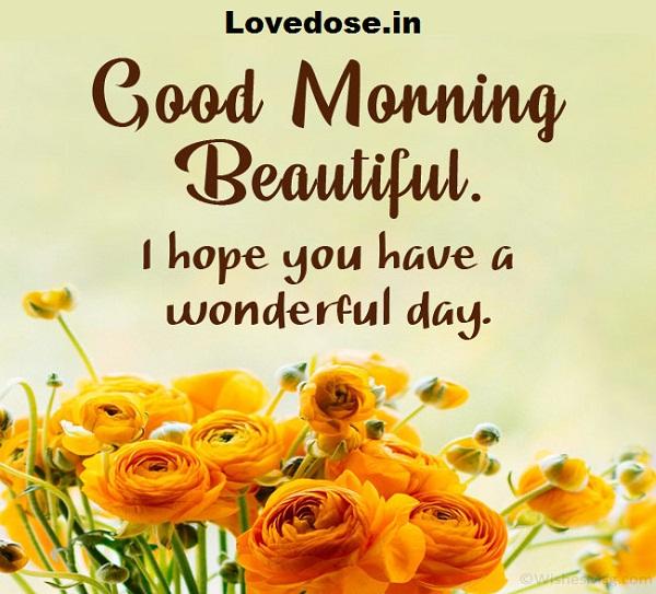 Lovely Good Morning SMS
