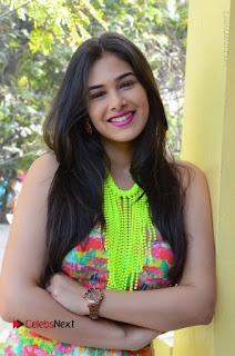 Telugu Actress Prasanna Stills in Short Dress at Inkenti Nuvve Cheppu Press Meet Stills  0017.JPG