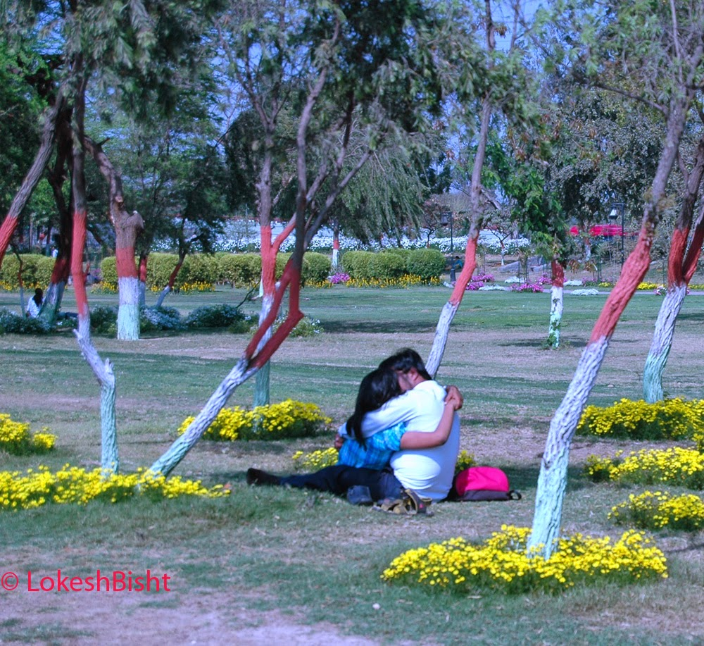 5 Best Parks in Delhi for Couples to Romance