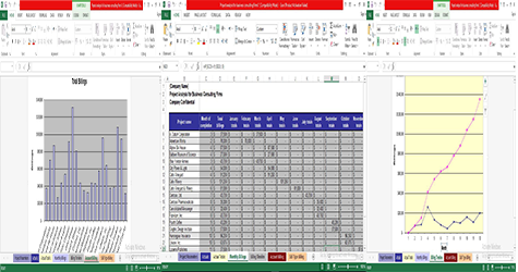 Sample Template for Project Analysis for Business Consulting Firms