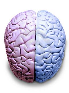 5 ejercicios para nivelar el cerebro lógico y el creativo. Hemisferios cerebrales