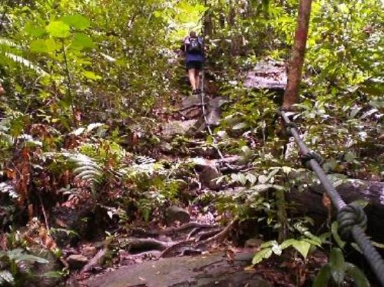 Jom mendaki Gunung Santubung