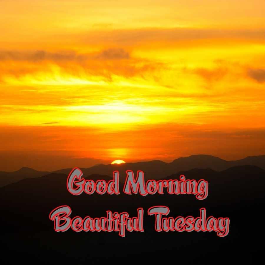 good morning tuesday image