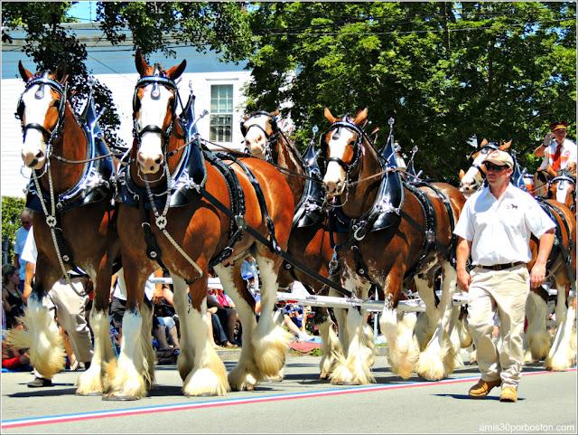 Carro de Caballos en el Desfile del 4 de Julio de Bristol