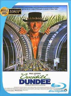 Cocodrilo Dundee 1986 HD [1080p] Latino [Mega] dizonHD
