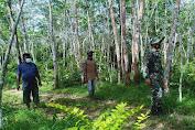 Babinsa Bersama MPA Cegah Karhutlah Dengan Patroli Susuri Hutan Dan Perkebunan