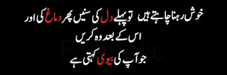 funny urdu quotes 03