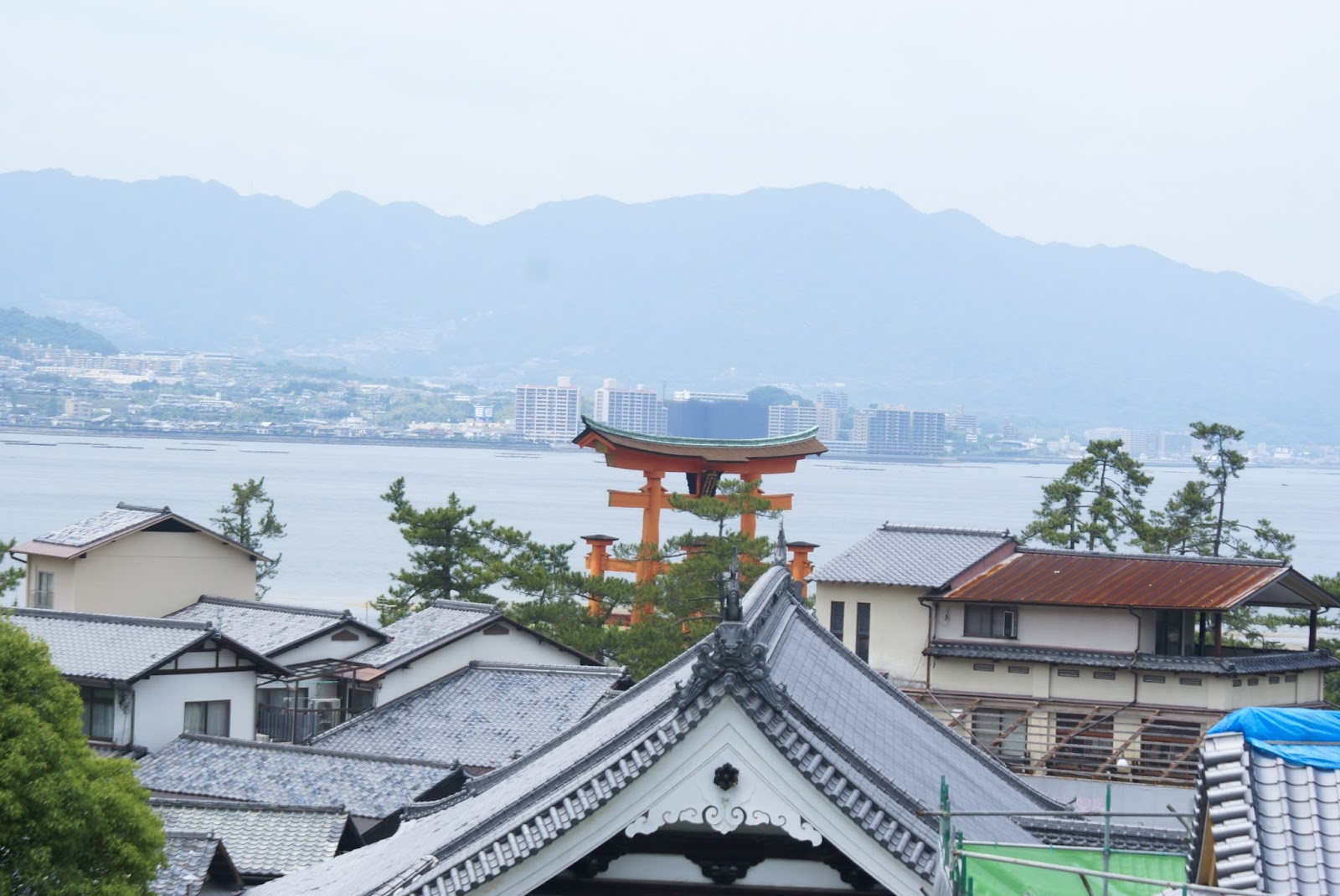 miyajima itsukushima torii roof japan