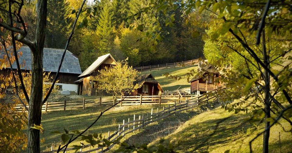 Por que viver perto da natureza é melhor para sua saúde