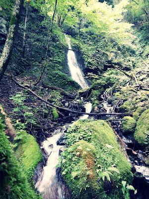 ワサビ大滝の下の滝
