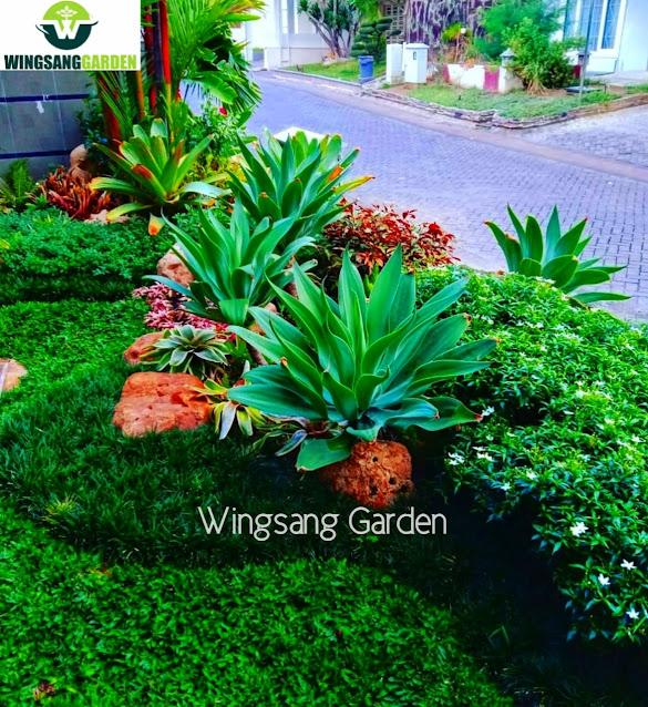 Tukang Taman Pontianak | Jasa Desain Dan Pembuatan Taman Di Pontianak Kalimantan Barat
