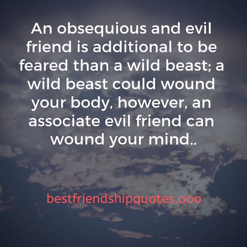 21 Best Quotes On Fake Friends And Friendship In 2019 - BEST ...
