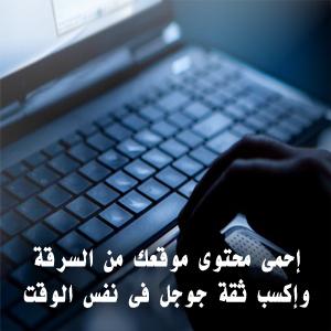 إحمى محتوى موقعك من السرقة