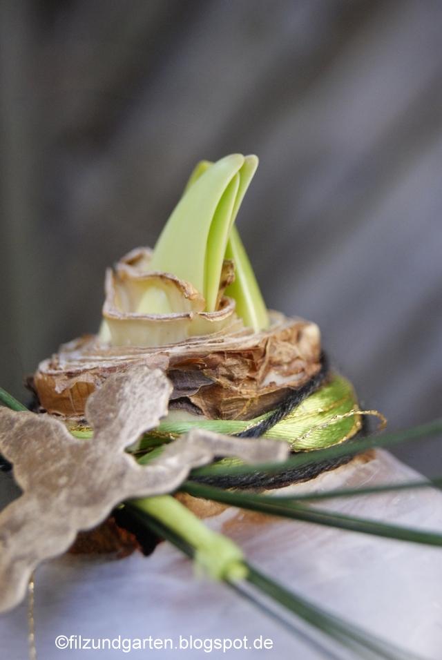 Wollfäden und Glitzerfäden um den Schaft der Amaryllis wickeln