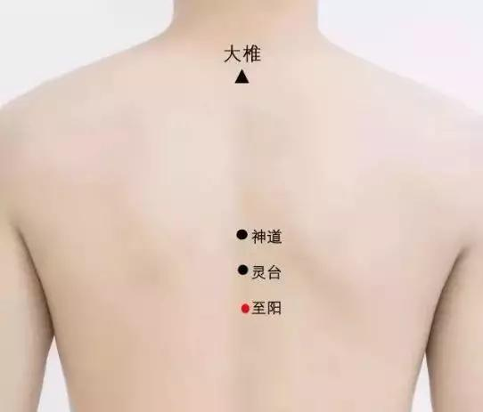 常通督脈,大病不來(調節氣血運行)