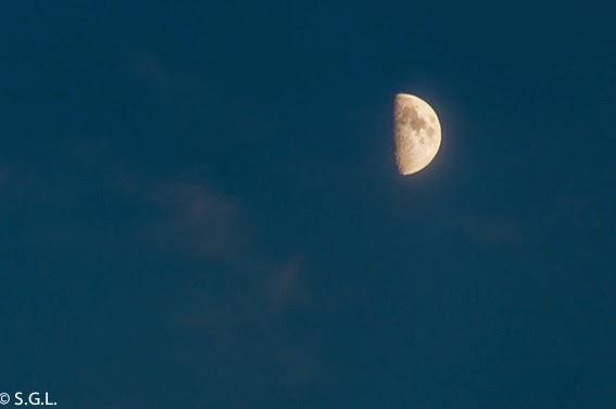 Luna creciente con L de Luna para de la A a la Z de Miss Lavanda