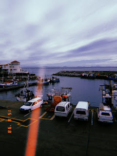 South african lifestyle blog, eastern cape tourist attractions, port st francis