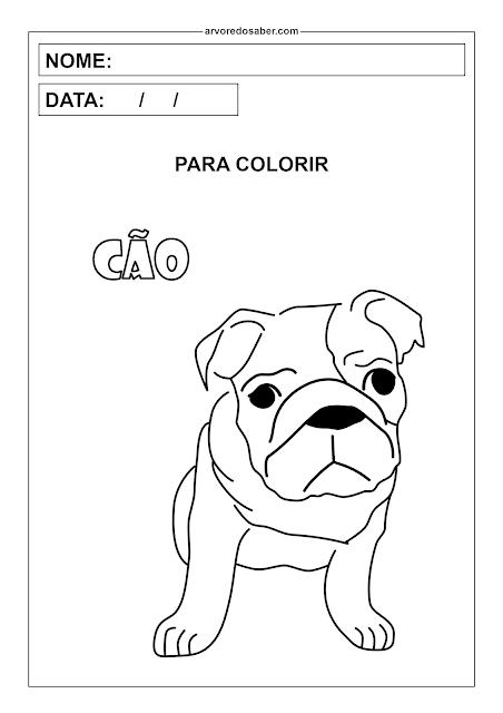 cão para colorir