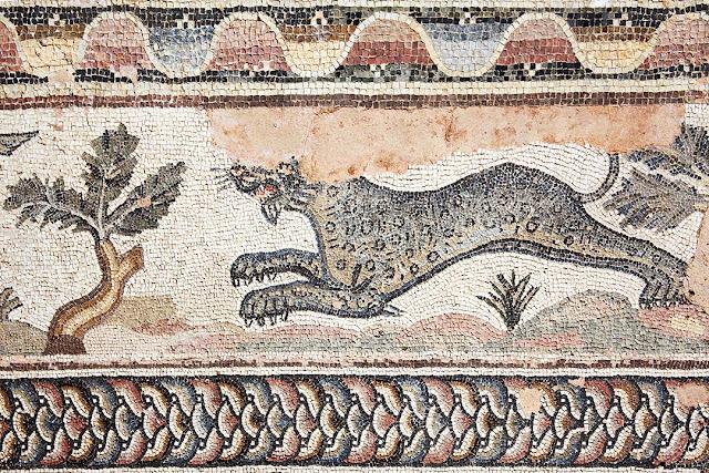Leopard mosaic Roman