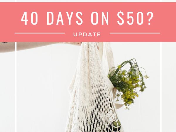 40 Days Update: Did I Make it on $50?