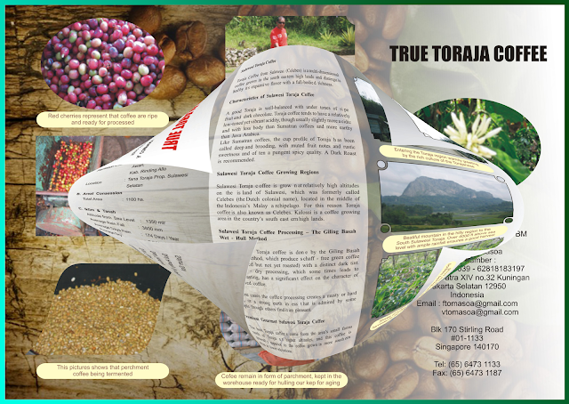 http://fauzichaniago.blogspot.com/2015/09/contoh-brosur-cofee-dari-toraja.html