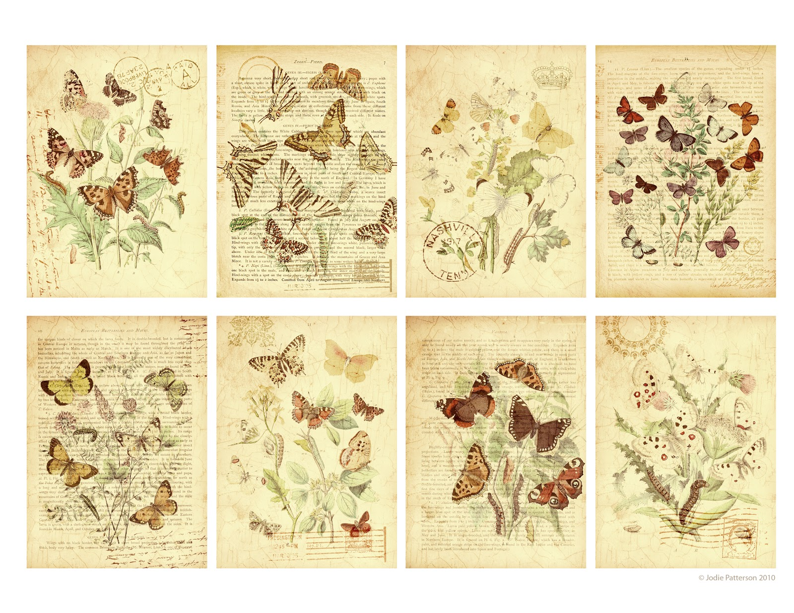 Jolee Designs Free Printable Butterfly Garden T Tags