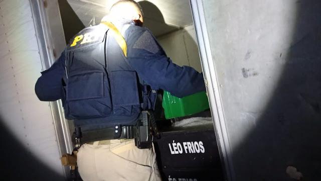 PRF prende homem por caça ilegal de aves silvestres no interior do RN