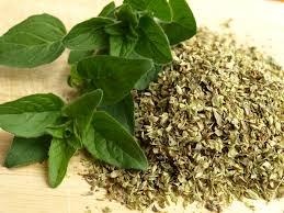 5 Surprising Health Benefits Of Oregano