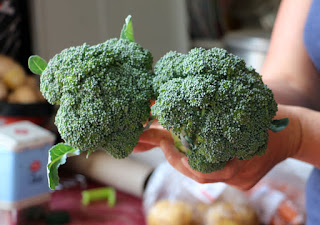 Home grown broccoli for dinner