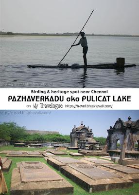 Pazhaverkadu things to do pulicat pinterest
