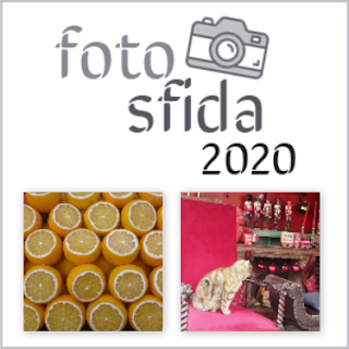 Fotosfida 42