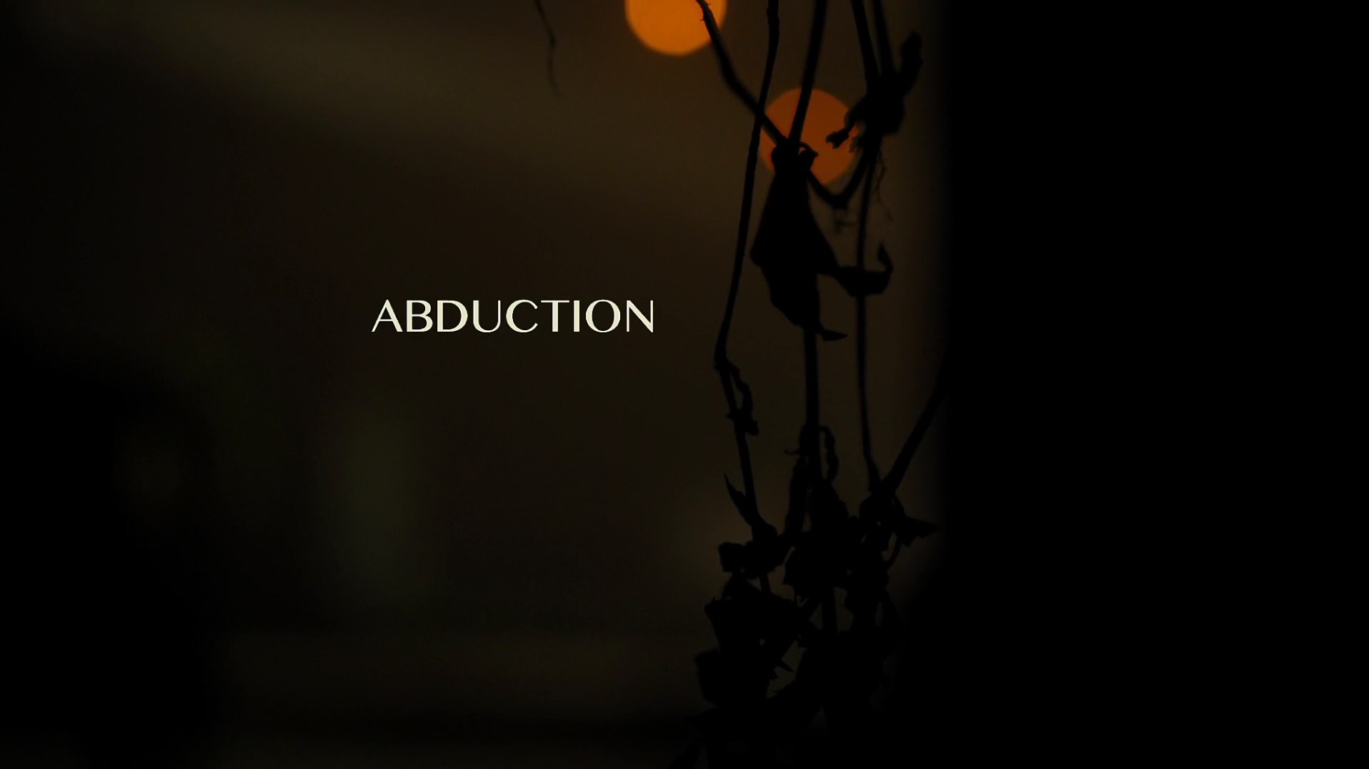 Abduccion (2019) Unrated 1080p WEB-DL Latino